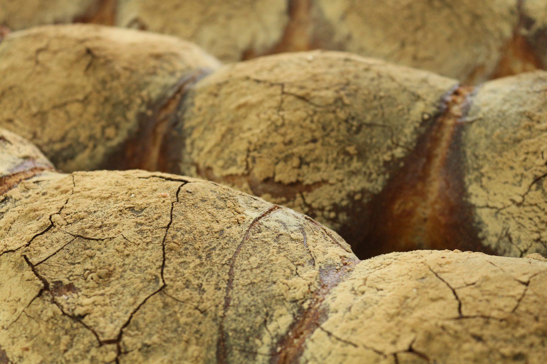 Maltese Bread